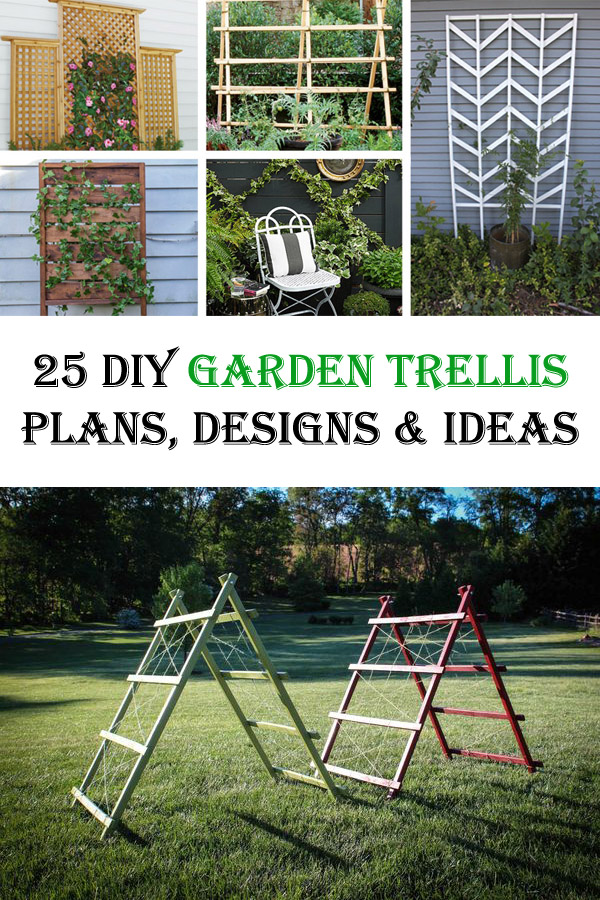 25 Chic DIY Garden Trellis Plans, Designs and Ideas