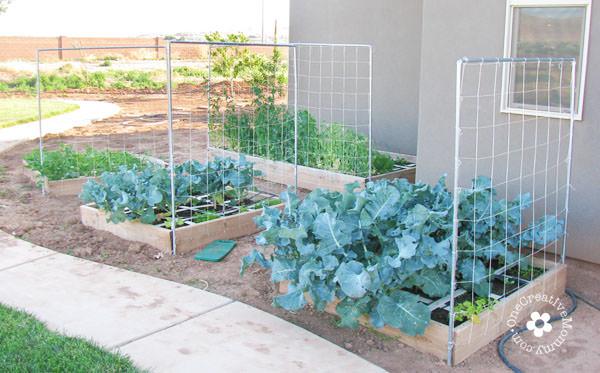 DIY Garden Trellis From One Creative Mommy