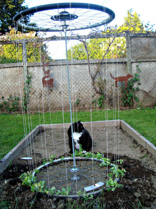 DIY Recycled Tire Trellis From The Family Chapters