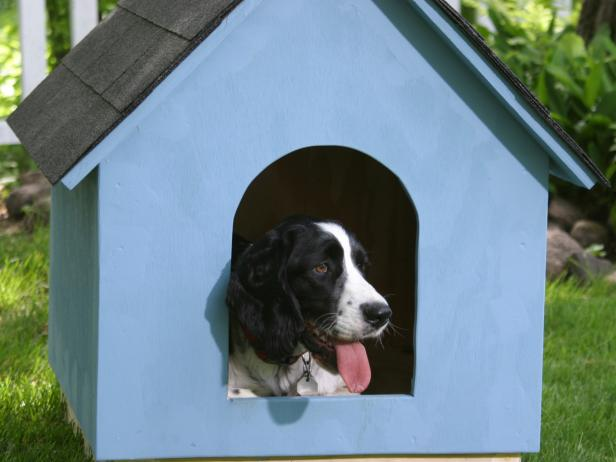 DIY Simple Doghouse From DIY Network