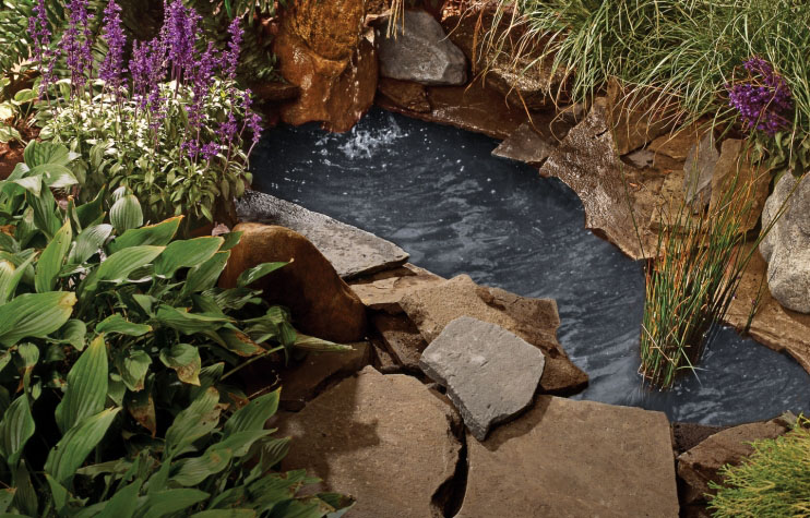 DIY Backyard Pond by ThisOldHouse