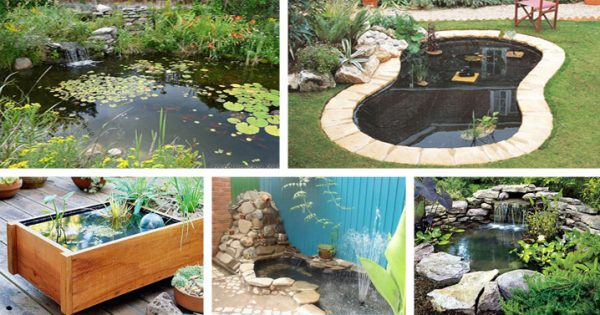 20 beautiful diy garden pond ideas crafts diy - Diy Garden Pond Ideas