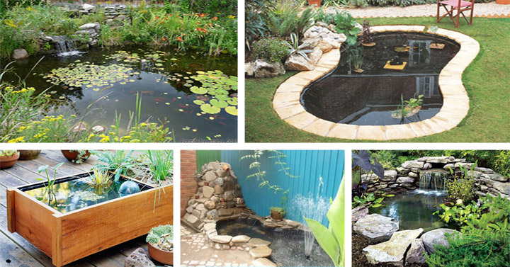 20 beautiful diy garden pond ideas - Diy Garden Pond Ideas