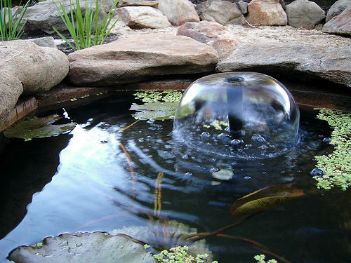 DIY Garden Pond by Instructables