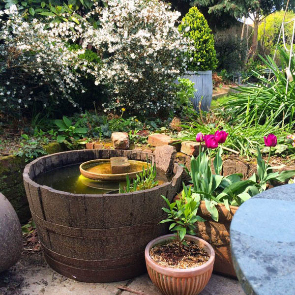 DIY Mini Wildlife Pond by TheMiddleSizedGarden