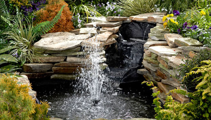 DIY Pond by Lowes