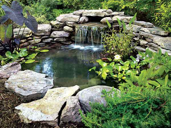 DIY Pond by PopularMechanics