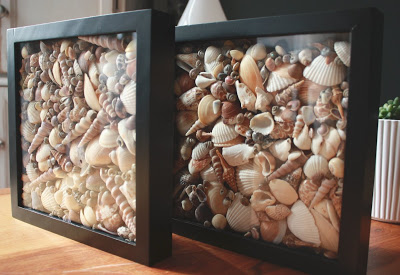 DIY Seashell Shadowboxes