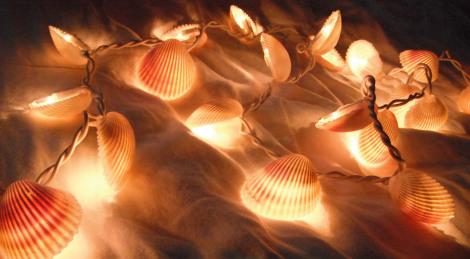 DIY String of Shells