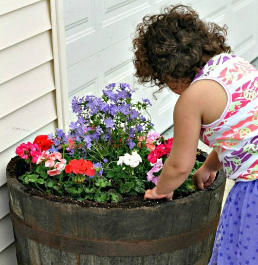 DIY Whiskey Barrel Flower Garden